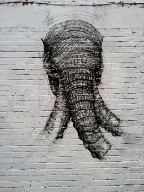 Close up of the Elephant at the start