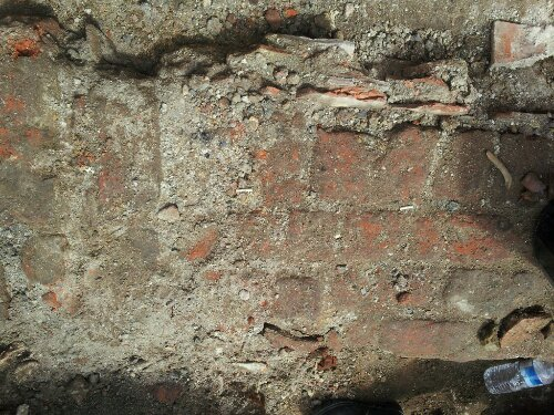 The uncovered section of Tudor wall which was hidden under a Goats field for years