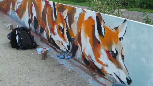 The foxes on the walll