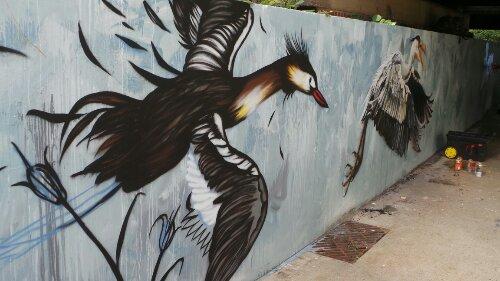 Bailon's Bird in Flight