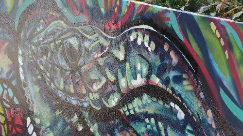A close up of Karis Knight's grass adder