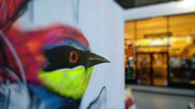 Brazilian artist L7M on Drays Walk.  This picture has been edited in the Creative Studio using the focus feature