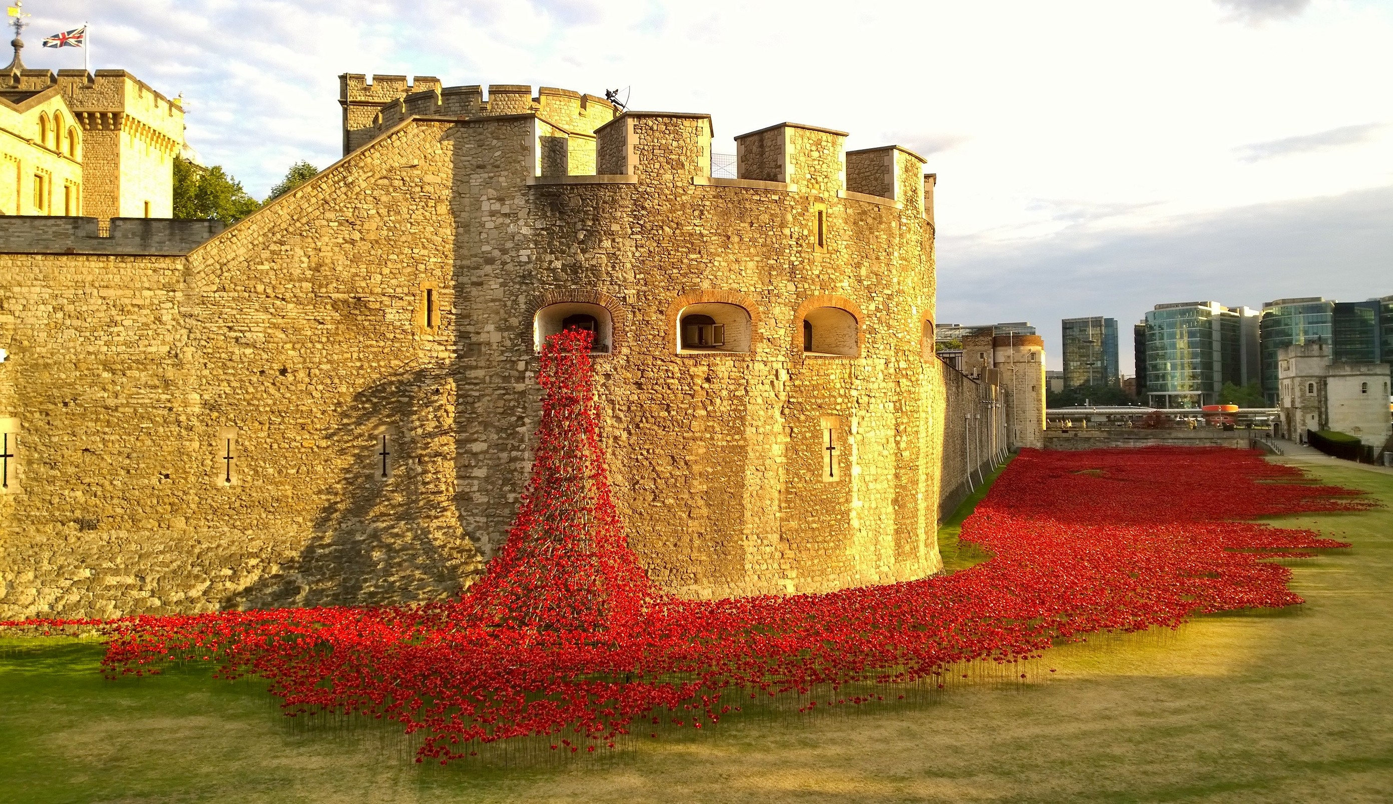 Tower of London Poppies Field Tower of London Poppies |