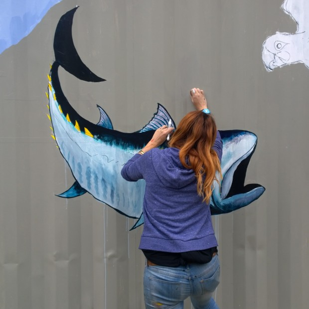 Mutiny placing the finishing touches onto her Atlantic Blue Fin tuna