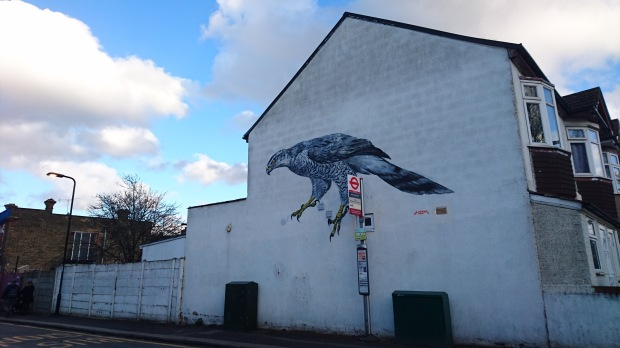 Painting of a Goshawk on the side of a house by street artist ATM