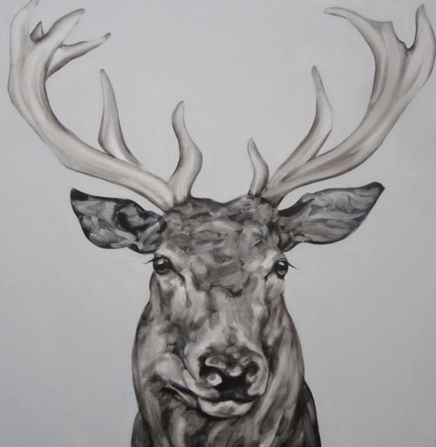 Abigail Reed Stag Head(poise 2)65x65cm