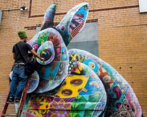 The New England Cottontail Rabbit by zurbaran1.  Picture taken from Street Art United States