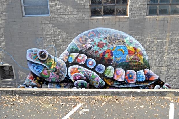 atlanta-box-turtle-louis-masai-sml-2
